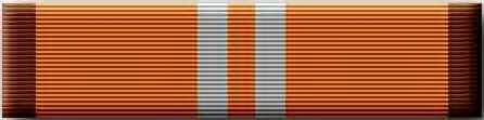 Academic Achievement Ribbon