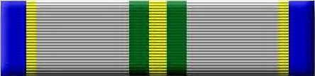 2nd Year Ribbon